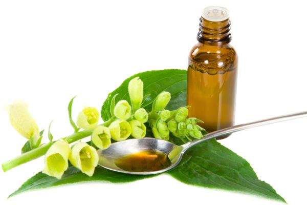 aromatherapie - santé - naturel - bien être